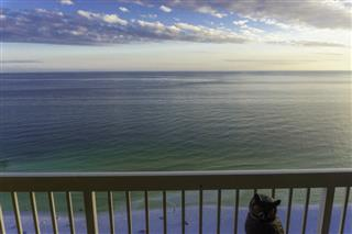 Pelican Beach Resort Condo For Sale